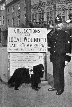 Dog fundraising policeman