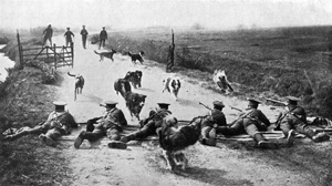 Dogs WW1 rifle fire