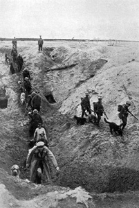 Dogs WW1 training in trenches