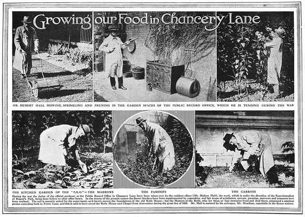 Growyourown chancery lane