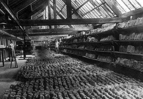 Bread blog 2