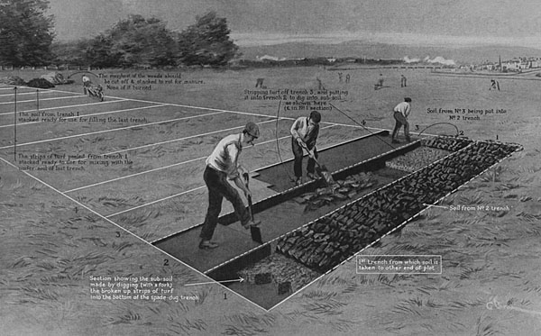 Growyourown dig own allotment